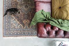 Binnenkijker Joanna Laajisto : 142 best tapis persans images on pinterest in 2019 carpet living