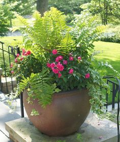 Best summer container garden ideas 38