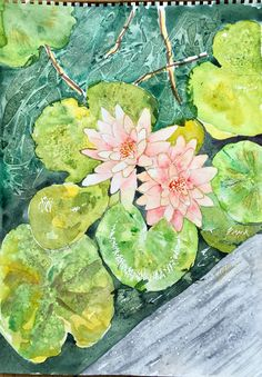 Water lilies watercolor