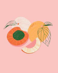 Art And Illustration, Illustrations, Graphic Design Illustration, Arte Sketchbook, Fruit Art, Art Graphique, Art Inspo, Line Art, Art Drawings