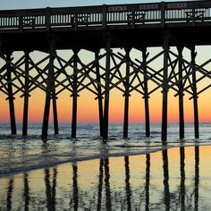 Southern Life: :Pattern of Pilings, Folly Beach Fishing PIer, Folly Beach, SC
