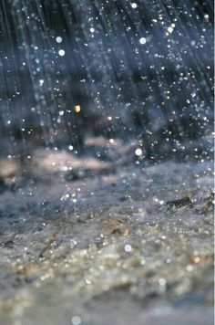 Pouring rain.  We are supposed to get rain tonight.  Hope it pours like this.