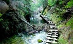 Výsledok vyhľadávania obrázkov pre dopyt slovensky raj Raj, Garden Bridge, Waterfall, Outdoor Structures, Waterfalls