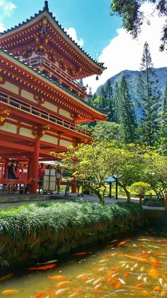 For things to do in Oahu away from Honolulu and Waikiki hotels, beaches, and hiking trails, consider exploring Hawaiian culture at the Byodo-In Temple. Its a replica of a temple in Japan at Uji near Kyoto. When planning your Hawaii vacation, add it to the Hawaii Vacation, Hawaii Travel, Beach Trip, Ireland Vacation, Beach Travel, Ireland Travel, Waikiki Beach, Honolulu Hawaii, Honolulu Hotels