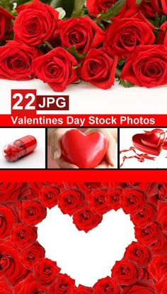 Valentines Day Stock Photos Free Download,Valentines Day Stock Photos,Stock Photos,Stock Photos Free,Stock Photos Free Download