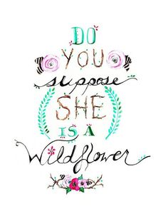 """Quote: """"Do you suppose she is a wildflower"""""""
