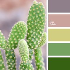 Color Palette #1969