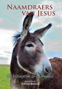 Christian Literature - CLF share the gospel with people across Africa and beyond through free and affordable literature in their languages. Literature, Channel, Christian, Animals, Literatura, Animales, Animaux, Animal, Animais