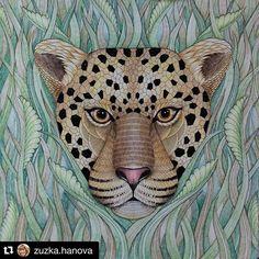 Perfeito! #Repost @zuzka.hanova ・・・ Můj poslední obrázek roku 2015 #tropicalwonderland #milliemarotta #coloring #coloringbook #adultcoloringbook #adultcoloring #milliemarottabooks