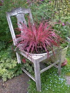 old chair as planter