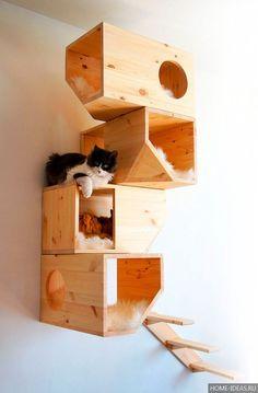 Домик для кошки своими руками: чертежи с размерами