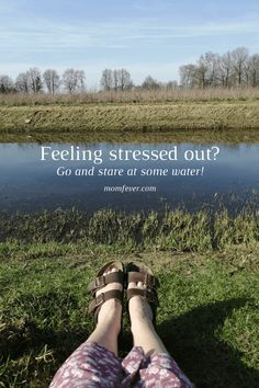 Feeling stressed out? Here's a quick and easy solution Feeling Stressed, Stressed Out, How Are You Feeling, Come And Go, Water Flow, Take Care Of Me, I Decided, You Can Do, Things To Think About