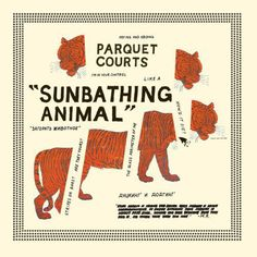 PARQUET COURTS, sunbathing animals