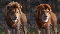 'The Lion King' deepfake uses original movie to 'fix' the CGI — Mashable Lion King Remake, Lion King 1, Lion King Fan Art, Lion King Movie, Disney Lion King, Disney Pictures, Best Funny Pictures, Disney And Dreamworks, Disney Pixar