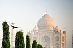 Agra-36 by MrsLimestone, via Flickr