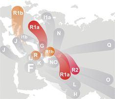 Gli Arcani Supremi (Vox clamantis in deserto - Gothian): L'aplogruppo R e la storia genetica degli Indoeuro...