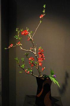 kyoto ikebana | Kyoto Ikebana Exhibition | ikebana