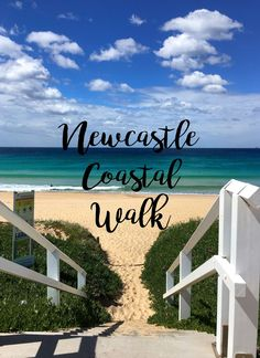This scenic Newcastle NSW Coastal walk takes you to a secluded beach full of great photo opportunities, clear blue water and some great hiking.