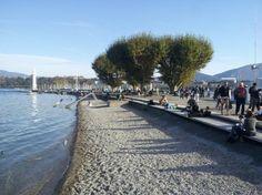 Bains des Pâquis Genève