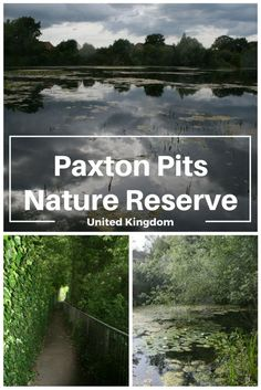 Paxton Pits Nature Reserve: The Mosquitoes Drove Me Out! Pet Travel, Family Travel, Travel Uk, Travel Plan, Travel Stuff, Europe Holidays, Ireland Holidays, Europe Travel Tips, Travel Guides
