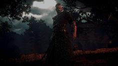 "Olgierd von Everec from ""Hearts of Stone"", ""The Witcher"" (polish game - ""Wiedźmin"") Olgierd Von Everec, The Witcher 3, Wild Hunt, Geek Stuff, Gaming, Hearts, Characters, Stone, Game"