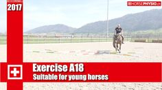 Exercise A18 Suitable for young horses