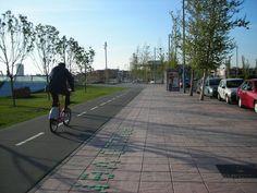 Pedalea reclama más carril bici en Zaragoza y sentido común