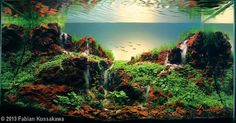 Aquascape Idea 51
