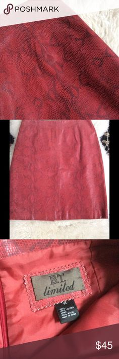 BTs Red Leather skirt Red snakeskin leather skirt. Fully lined and  zips in the back. Small slit in the back. 100% leather B.T. limited Skirts