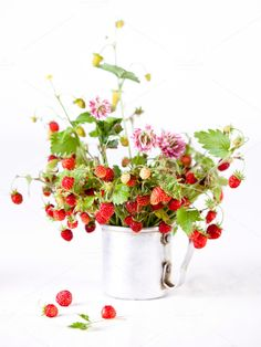Bouquet of wild strawberries ~ Food and Drink Photos on Creative Market