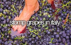 """Stomp grapes in Italy"": Ever since that one I Love Lucy episode, I've wanted to do this..."