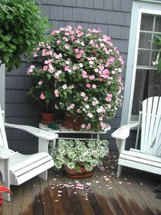 Impatiens planted in a strawberry pot. In less than a month they look like one giant bush.