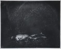 """Sally Mann - from series """"What Remains"""""""