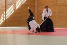 ÖAV Verbandslehrgang am 14./15. Mai 2016 - Budokan Wels: Danprüfung Kokyonage mit Jo