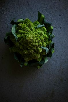 romanesco | the first mess
