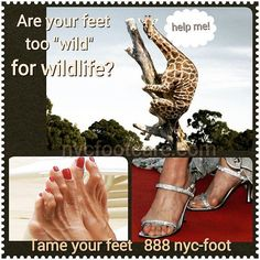 Are your feet too wild? Call NYC FOOTCARE 888-nyc-foot / nycfootcare.com 212.385.2400 #NYC #pedicure #highheels #l4l #toes #makeup #manhattan #bronx #brooklyn #queens #fashion #fashionista #heels...