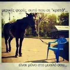 funny horse pictures - funny horse pictures with captions Gym Memes, Funny Memes, Hilarious, Motivational Pictures, Inspirational Quotes, Nice Quotes, Interesting Quotes, Funny Horse Pictures, Learned Helplessness