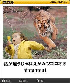 Funny Images, Funny Pictures, Funny Jokes, Hilarious, Funny Cute, Landscape Design, Comedy, Wildlife, Humor