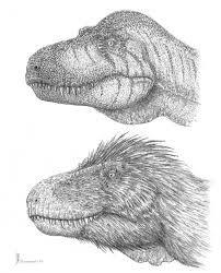 「t-rex hair」の画像検索結果