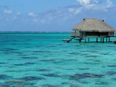 Bungalow in Moorea! Paradise! I apparently have an obsession about huts IN the ocean!