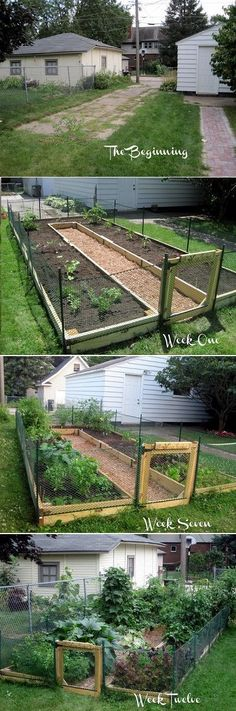 Learn How to Build A U-Shaped Raised Garden Bed pinned with Pinvolve…
