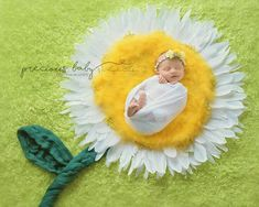 Beautiful newborn baby girl wrapped sleeping in a yellow Daisy with feathers for petals. smile smiling Precious Baby Photography by Angela Forker New Haven Fort Wayne Indiana unique Baby ImaginArt baby scenes Newborn Boy Clothes, Newborn Baby Photos, Baby Girl Newborn, Baby Girl Photos, Monthly Baby Photos, Foto Baby, Newborn Baby Photography, Photographing Babies, Baby Pictures