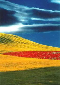 Sokkikka - the closet: Franco Fontana