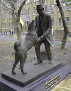 Historia real del perro HACHIKO: