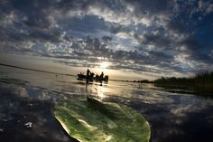 in Danube Delta Catfish And Carp, Danube Delta, Romania, Fishing, Mountains, Sunset, Country, Places, Travel