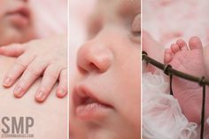 sweet newborn details    stefani marcus photography  dallas fort worth