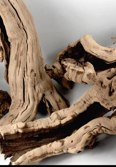 Grapewood Branch Natural 12-14in