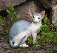 Sphynx Cat Figurine by VICTORIA ZHOVNORUK   Polymer Clay Planet