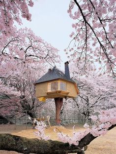 Akebono kodomo-no-mori (Japón)
