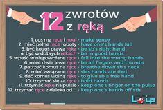 English Phrases, Learn English Words, English Vocabulary, English Grammar, Learn Polish, English Collocations, Polish Language, Perfect English, School Notes